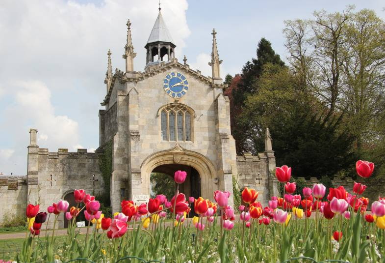 Bishopthorpe Gatehouse through bed of pink tulips